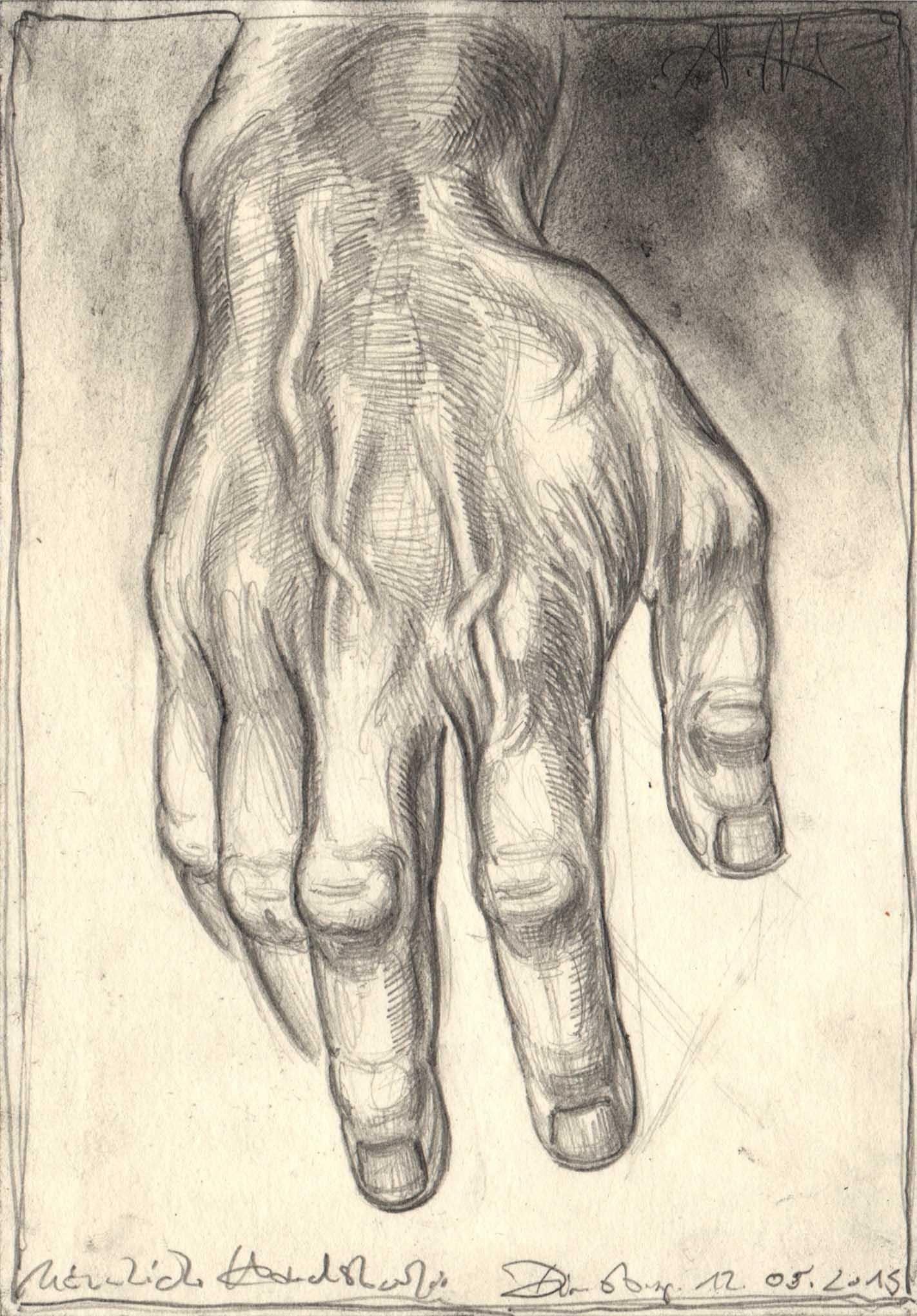 Hand Male Study