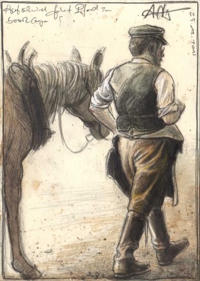 Farrier lead horse for shoeing