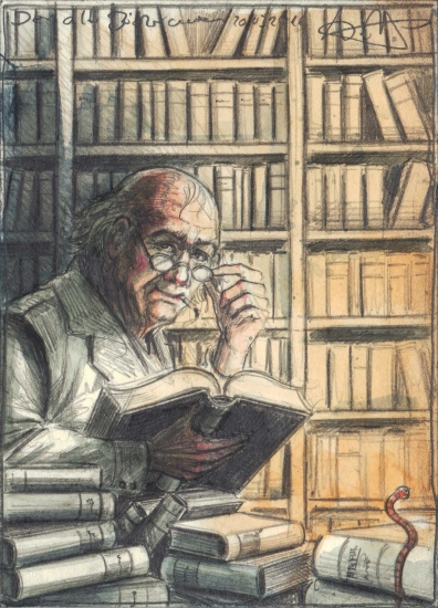 The old bookworm