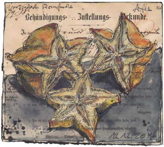 Dried star fruit