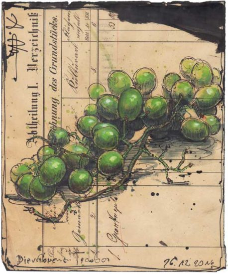 The lost grapes