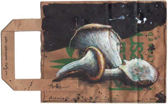 Oyster mushrooms on boesner shopping bag