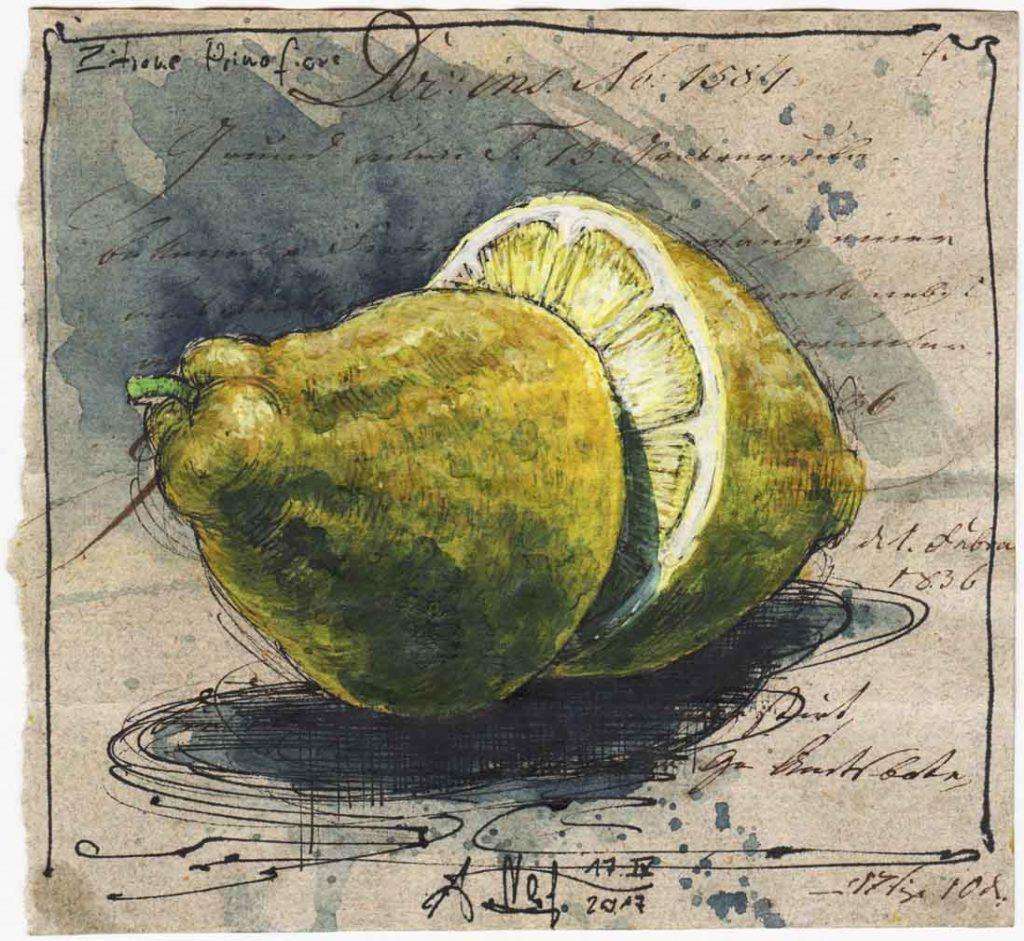 Lemon Primofiore