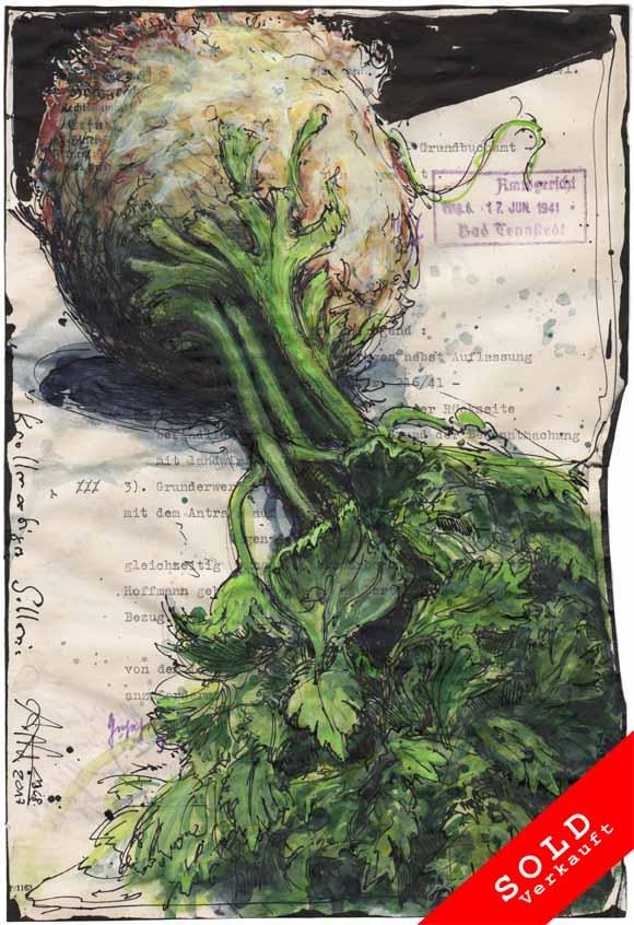 Tuberous celery